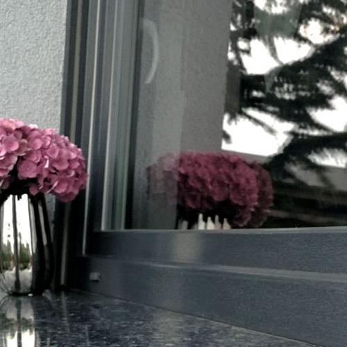 kwiaty na parapecie zewnętrznym