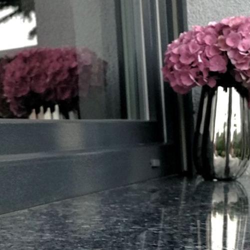 kwiaty na parapecie